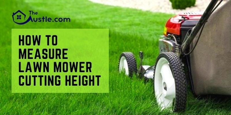 How to Measure Lawn Mower Cutting Height
