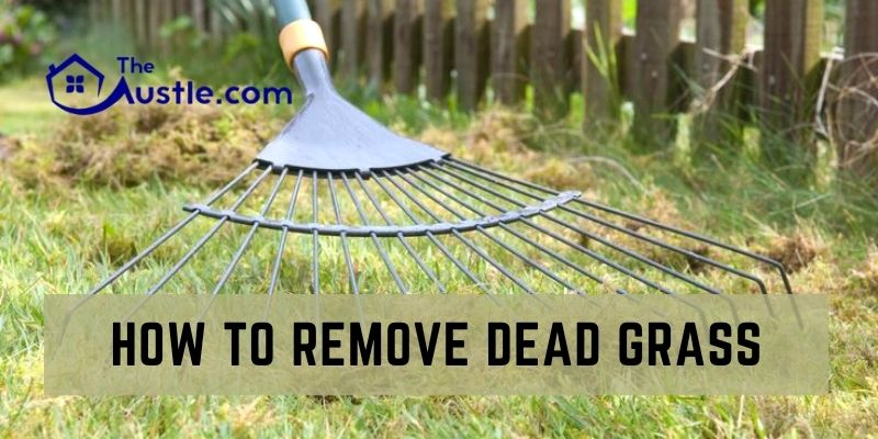 How To Remove Dead Grass