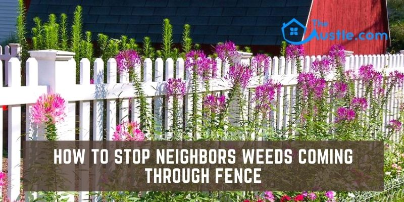 How to Stop Neighbors Weeds Coming Through Fence