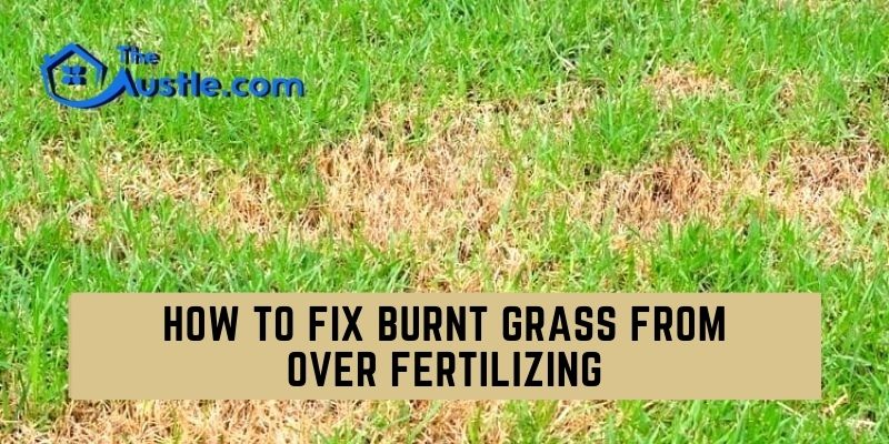 How To Fix Burnt Grass From Over Fertilizing