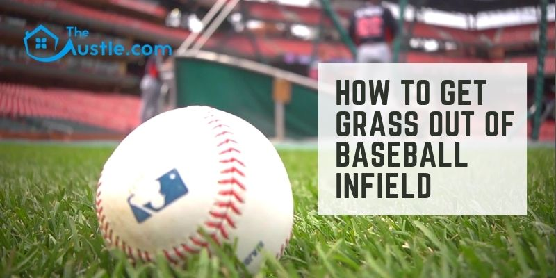 How to Get Grass Out of Baseball Infield