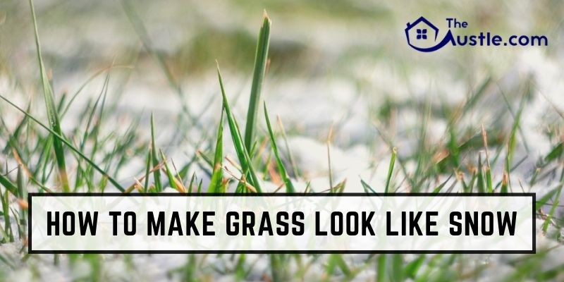 How To Make Grass Look Like Snow