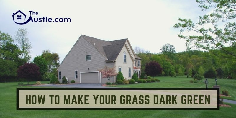 How to Make Your Grass Dark Green
