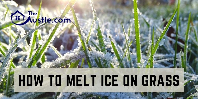 How To Melt Ice On Grass