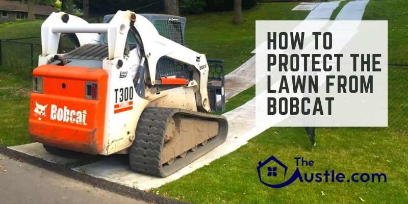 How To Protect The Lawn From Bobcat