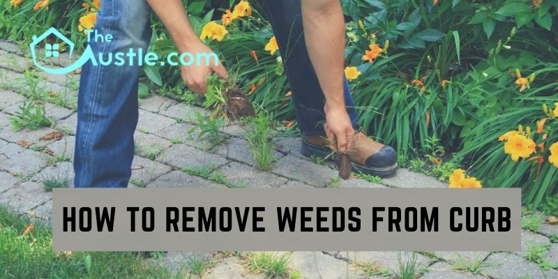 How To Remove Weeds From Curb
