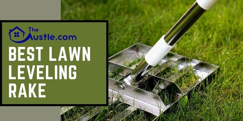 Best Lawn Leveling Rake